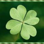 Quanto incide la fortuna/sfortuna nella nostra vita