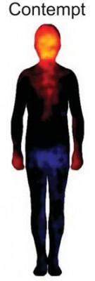 Disprezzo - linguaggio del corpo