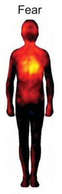 Paura - linguaggio del corpo