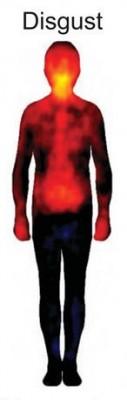 disgusto - linguaggio del corpo