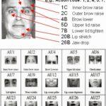 Analisi del volto, l'uso del facs